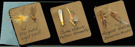 Hatch Charts